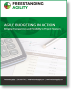 Download: Agile Budgeting in Action